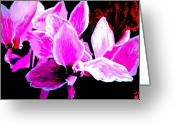 Vibrant Pastels Greeting Cards - La La Lily Greeting Card by Linda Hubbard Red Cap Art