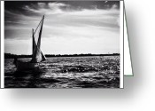 Blackandwhite Greeting Cards - La Lune & Le Lac Greeting Card by Natasha Marco