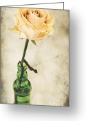 Delicate Bloom Greeting Cards - La rose Greeting Card by Angela Doelling AD DESIGN Photo and PhotoArt