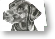 Pencil Drawing Drawings Greeting Cards - Lab Charcoal Drawing Greeting Card by Susan A Becker