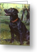 Black Lab Greeting Cards - Labrador Retriever Greeting Card by Jean Hildebrant