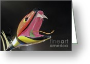 Lady Gaga Workshop Greeting Cards - Lady Gaga Snake  Greeting Card by Chuck Kuhn