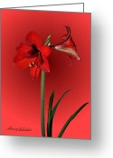 Showy Greeting Cards - Lady in Red Greeting Card by Kristin Elmquist