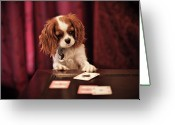 Luck Greeting Cards - Lady Luck Greeting Card by R. Brandon Harris