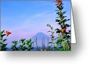 Hollyhock Greeting Cards - Lake Atitlan Flowers and Peaks Greeting Card by Thomas R Fletcher