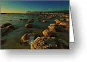 Natural Formations Greeting Cards - Lake Clifton Thrombolites Greeting Card by Heather Thorning