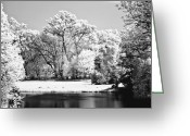 Daydream Greeting Cards - Lake in infra red Greeting Card by Odon Czintos