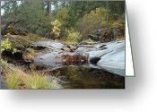 Pebbles Greeting Cards - Lake in the Forest 1 Greeting Card by Irina  March