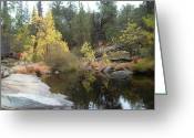 Pebbles Greeting Cards - Lake in the forest Greeting Card by Irina  March