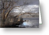 Lakescape Greeting Cards - Lake in Upper Nyack Park NY Greeting Card by Viola El
