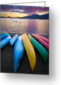 Colours Greeting Cards - Lake Quinault Kayaks Greeting Card by Inge Johnsson