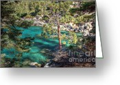 Nevada Greeting Cards - Lake Tahoe Swimming Hole Greeting Card by Scott McGuire