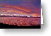 Lake Tekapo Greeting Cards - Lake Tekapo Greeting Card by James Callaghan