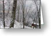 Seattle Greeting Cards - Lake Union In Snow Greeting Card by Sheilan Sheilan
