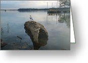 Damn Greeting Cards - Lakeside Greeting Card by Steven  Michael