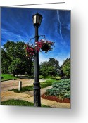Landscape Photographs Greeting Cards - Lamp Post in the Park Greeting Card by Lourry Legarde