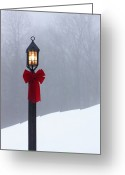 Bare Trees Greeting Cards - Lamppost in Snow Greeting Card by Will and Deni McIntyre