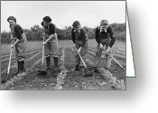 18-19 Years Greeting Cards - Landgirls Hoeing Greeting Card by Maeers
