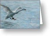 Landing Painting Greeting Cards - Landing Gear Ready Greeting Card by Anda Kett