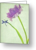 Tulip Greeting Cards - Landing Greeting Card by Rebecca Cozart