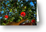 Backlit Greeting Cards - Lanterns at Tlaquepaque in Sedona Arizona Greeting Card by David Patterson