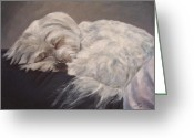 Sleeping Dog Greeting Cards - Lap Dog Greeting Card by Elizabeth  Ellis