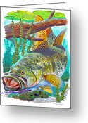 Reptiles Painting Greeting Cards - Largemouth Bass Greeting Card by Carey Chen