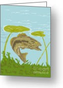 Bass Digital Art Greeting Cards - Largemouth Bass Fish Swimming Underwater  Greeting Card by Aloysius Patrimonio