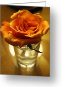 Tamara Stoneburner Greeting Cards - Las Vegas Rose Greeting Card by Tamara Stoneburner
