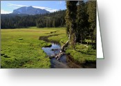 Hot Springs Greeting Cards - Lassen Volcanic Meadow Greeting Card by Pierre Leclerc