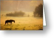 Ron Mcginnis Photography Greeting Cards - Last Horse Greeting Card by Ron  McGinnis