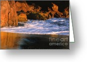 Seafoam Greeting Cards - Last Light on Harris Beach Greeting Card by Sandra Bronstein