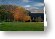 Golf Green Greeting Cards - Last Light on the Golf Green Greeting Card by Thomas Young