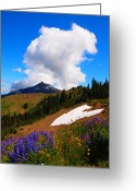 Clods Greeting Cards - Last Snow Greeting Card by Jim Moore