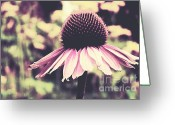 Summers Greeting Cards - Last summer Greeting Card by Angela Doelling AD DESIGN Photo and PhotoArt