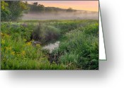 Meeker Greeting Cards - Late Summer Greeting Card by Bill  Wakeley