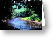 Trout Stream Greeting Cards - Late Summer on Williams River Greeting Card by Thomas R Fletcher