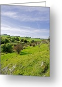 Dry Stone Wall Greeting Cards - Lathkill Dale and Fern Dale to Monyash Greeting Card by Rod Johnson