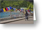 Williams Photo Greeting Cards - Laundry Drying- St Lucia. Greeting Card by Chester Williams