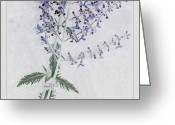 Luminescent Greeting Cards - Lavender  Greeting Card by Bonnie Bruno