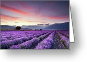 Horizon Over Land Greeting Cards - Lavender Field Greeting Card by Evgeni Dinev Photography