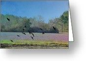 Spring Scenes Greeting Cards - Lavender Fields Aglow Greeting Card by Jan Amiss Photography