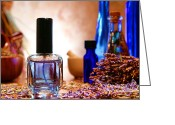 Fragrance Greeting Cards - Lavender Shop Greeting Card by Olivier Le Queinec
