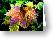 Rich Colored Greeting Cards - Lavish Leaves 2 Greeting Card by Will Borden