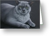 Pets Portraits Greeting Cards - Layla Greeting Card by Cynthia House