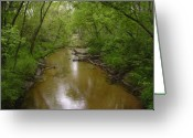 Outdoors Jewelry Greeting Cards - Lazy Creek Greeting Card by Rob  Parker