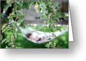 Tree Limbs Greeting Cards - Lazy Days of Summer Greeting Card by Lisa Knechtel