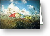 Umbrellas Greeting Cards - Lazy Days of Summer Greeting Card by Tammy Wetzel