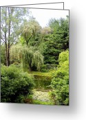 Foilage Greeting Cards - Lazy Pond Greeting Card by Deborah  Crew-Johnson