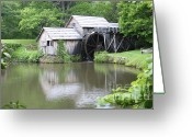 Most Photographed Photo Greeting Cards - Lazy Summer Days Greeting Card by Shannon Slaydon